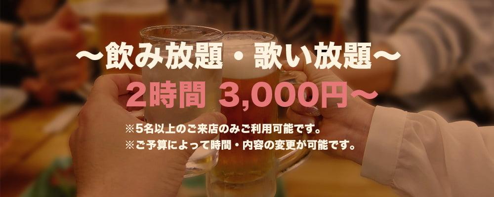 ~飲み放題・歌いたい放題~2時間 3,000円